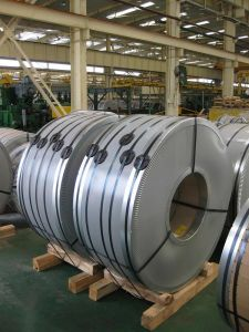 Qiyi Stainless Steel Coil for Cookware