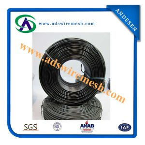 Manufacturer High Tensile Black Annealed Bending Iron Wire for Sale pictures & photos