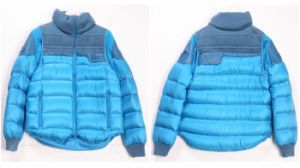 Men′s Zipped Down Jacket Winter Apparel (W21)