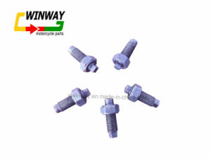 Ww-9506 Motorcycle Part, Motorcycle Valve Adjusting Screw, pictures & photos
