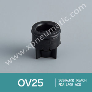Mini Cartridge Check Valve Dn12 pictures & photos