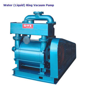 Roots Pump with Water (Liquid) Ring Pump Vacuum System pictures & photos