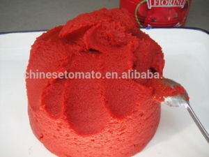 400g Gino Canned Tomato Paste for Africa Direct Factory Price pictures & photos
