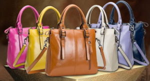 Supply Customized Fashion Casual Lady Leather Bag (H80479)