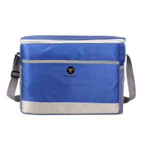 2018 Best Small Insulated Thermal Lunch Cooler Delivery Bag