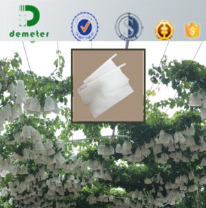 Chile Market Popular All-Wood Pulp Paper Micro Pore Protect Grape Paper Bag pictures & photos
