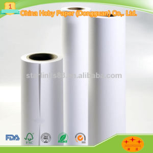 Plotter Paper for Cutting Room in Garment Factory pictures & photos