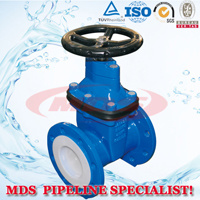 Ductile Iron BS5163 Gate Valve pictures & photos