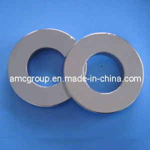 Rare Earth SmCo Magnet Ring pictures & photos