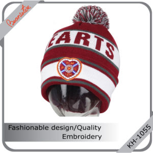 china high definition jacquard hat with quality embroidery and pom