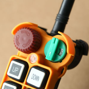 F24-6D Industry Crane Remote Control for Electronic Hoist pictures & photos