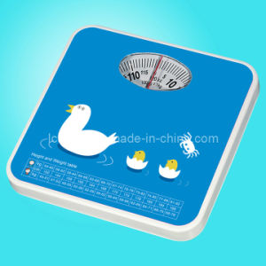 Bathroom Scale pictures & photos