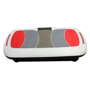 Dual Motor Home Use Vibration Plate Super Slim Crazy Fit Massage