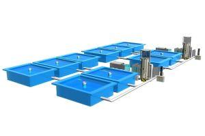 China Ras Recirculation Aquaculture System - China
