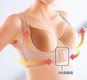 Breast up Underwear Belt pictures & photos