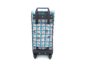 2015 New Design Digital Printing Water-Proof Travel Luggage Bag (BDX-161023) pictures & photos