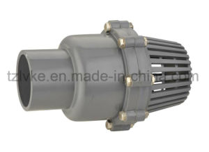 PVC Pump Foot Valve (ANSI, DIN) pictures & photos