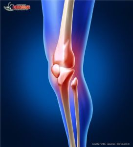 Joint Lubrication for Knee