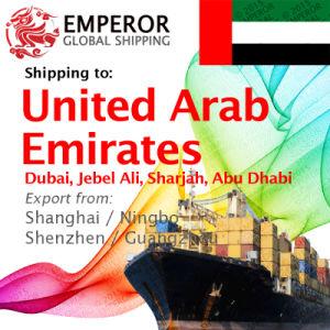 Cargo Ship From Tianjin, Qingdao, Dalian, Xiamen to Sharjah, Jebel Ali,  Dubai, Al Ain, Abu Dhabi