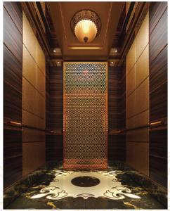 Cheap Home Elevator Small/Lift Elevator / Elevator Lift Passenger pictures & photos