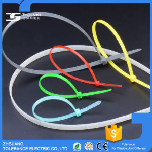 Disposal Plastic Cable Tie Binding Nylon Cable Tie