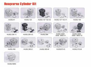 Chain Saw Spare Parts for Cylinder Kits (HS372-M) pictures & photos