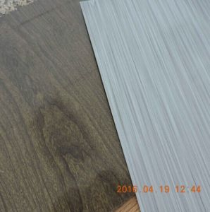 PCM Brushed Hairline Prepainted Galvanized Steel Sheet for Refrigerator pictures & photos