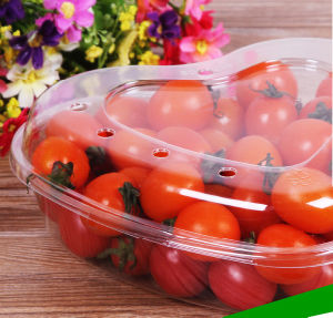 Eco-friendly plastic packing food tray for fruit(PP tray) pictures & photos