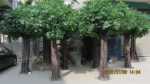 Artificial Banyan Plant Tree Ficus Tree pictures & photos