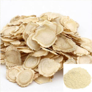 Chinese Ginseng Extract (Premixed Ginseng Powder) on Hot Sale