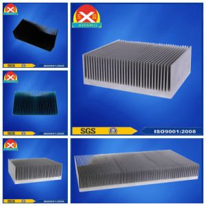 Frequency Converter Heat Sink with SGS, ISO 9001: 2008 pictures & photos