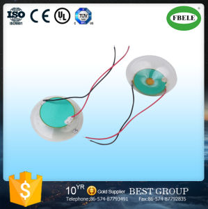 Cheaper American Piezo Buzzer with PVC pictures & photos