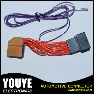 Order Make Anti Theft Auto Window Cable Electronic Wire Harness pictures & photos