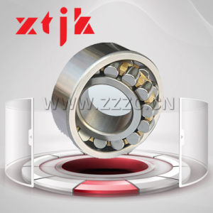 Double Row Chinese Manufaturer Cylindrical Roller Bearing High Quality and Low Price