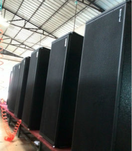 Vt4889 Dual 15 Inch Three Way Line Array (VT4889) pictures & photos