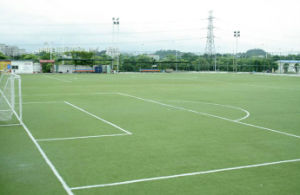 Mesh Artificial Grass of High Quality for Football/Tennis Courts