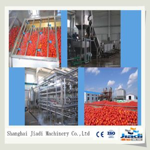 Machinery for Tomato Sauce