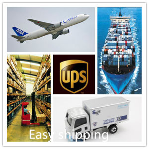 Consolidate Reliable Shipping Agent (20′ft/40′ft/40′HQ) From China to Holland