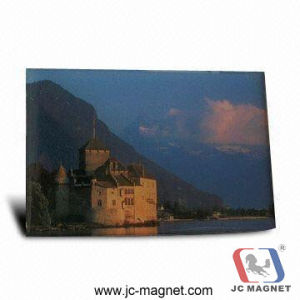 Custom Promotional 3D Refrigerator Magnet (Rubber magnet) pictures & photos