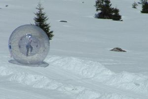 Zorb Balls for Grass Land or Snowfield (D1001B) pictures & photos