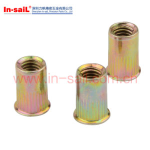 Stainlessteel Flat Head Inner-Hex Body Rivet Nuts pictures & photos