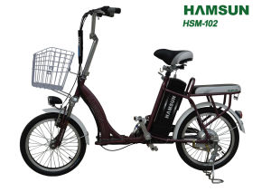 Electric Bike (HSM-102)