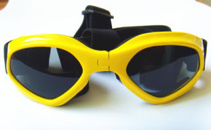 Yellow Pet Glasses, Dog Outdoor Sunglasses pictures & photos