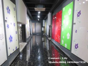 High Glossy Acrylic MDF Door for Kitchen Cabinet (FY056) pictures & photos