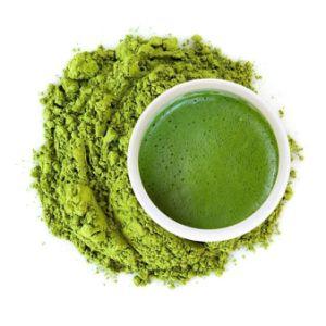 Poudre de thé vert Bio Matcha avec échantillon gratuit