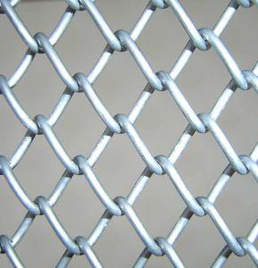 Cercado de la cadena de acero galvanizado (ECLF-01)
