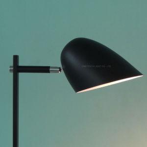 Modern en eenvoudig van de Schommeling Blcak de Verlichting van de Studie van de Schaduw van het Metaal voor Woonkamer