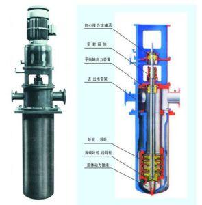 Bomba de condensados do Canhão Multiestágio vertical (LDTN)
