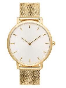 La mode à deux tons de couleur Lady Watch maille en acier inoxydable de montres pour les femmes (Wy-121D)