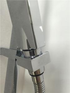 固体真鍮の衛生製品の浴室のシャワーのミキサー(ARX0808)